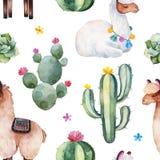 Modelo inconsútil con el cactus verde de la acuarela, los succulents, las flores multicoloras y las llamas lindas imágenes de archivo libres de regalías