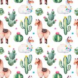 Modelo inconsútil con el cactus verde de la acuarela, los succulents, las flores multicoloras y las llamas lindas foto de archivo libre de regalías