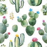 Modelo inconsútil con el cactus verde de la acuarela, los succulents y las flores multicoloras imagenes de archivo
