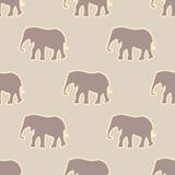 Modelo inconsútil con el elefante Imágenes de archivo libres de regalías