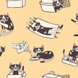 Modelo inconsútil con el gato divertido que se lava, comiendo, durmiendo, sentándose dentro de la caja del cartón y del portador  libre illustration