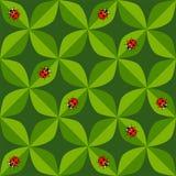 Modelo inconsútil con el ladybug Fotos de archivo libres de regalías