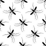 Modelo inconsútil con el mosquito Pipiens del mosquito mosquito a mano Vector Imágenes de archivo libres de regalías