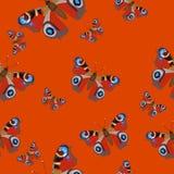 Modelo inconsútil con el ojo del pavo real de las mariposas Mariposas de Borgoña en un fondo rojo Imagen del vector ilustración del vector