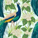 Modelo inconsútil con el pavo real, las flores y las hojas ilustración del vector
