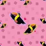 Modelo inconsútil con el tucán tropical de los pájaros Imagenes de archivo