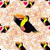 Modelo inconsútil con el tucán tropical de los pájaros Fotos de archivo