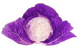 Modelo inconsútil con la col violeta Pintura de la acuarela libre illustration