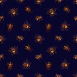 Modelo inconsútil con las abejas de la miel en fondo oscuro Contexto de la apicultura o de la apicultura Vector dibujado mano col Libre Illustration