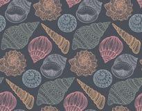 Modelo inconsútil con las conchas marinas adornadas dibujadas mano Imágenes de archivo libres de regalías