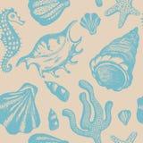 Modelo inconsútil con las conchas marinas dibujadas mano Fondo marina Imagen de archivo libre de regalías