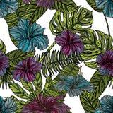 Modelo inconsútil con las flores del hibisco Foto de archivo