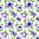 Modelo inconsútil con las flores púrpuras blancas de la anémona de la acuarela Diseño floral de la primavera para casarse la invi foto de archivo libre de regalías