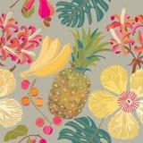 Modelo inconsútil con las flores tropicales Fotografía de archivo libre de regalías
