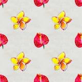 Modelo inconsútil con las flores tropicales Fondo de la acuarela imágenes de archivo libres de regalías