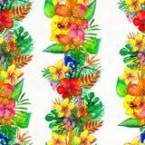 Modelo inconsútil con las flores tropicales Fondo de la acuarela imagen de archivo