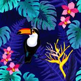 Modelo inconsútil con las flores y el pájaro del tucán libre illustration