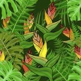 Modelo inconsútil con las flores y las hojas tropicales del helecho stock de ilustración