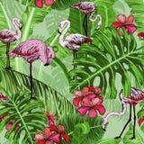Modelo inconsútil con las flores y los pájaros tropicales del flamenco stock de ilustración