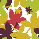 Modelo inconsútil con las hojas de arce del otoño en anaranjado, rojo, verde, Brown y amarillo Perfeccione para el papel pintado, Foto de archivo