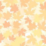 Modelo inconsútil con las hojas de arce del otoño Ilustración del vector Fotos de archivo libres de regalías