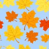 Modelo inconsútil con las hojas de arce del otoño. Vector stock de ilustración