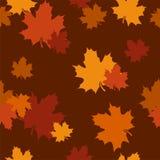 Modelo inconsútil con las hojas de arce del otoño. Vector libre illustration