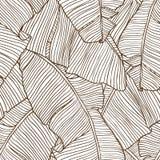 Modelo inconsútil con las hojas de la palmera Imágenes de archivo libres de regalías