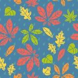Modelo inconsútil con las hojas de otoño Fotos de archivo libres de regalías