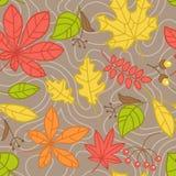Modelo inconsútil con las hojas de otoño Foto de archivo libre de regalías
