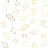 Modelo inconsútil con las hojas de otoño Imagen de archivo