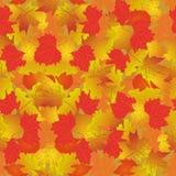 Modelo inconsútil con las hojas de otoño brillantes Foto de archivo