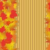 Modelo inconsútil con las hojas de otoño brillantes Fotografía de archivo