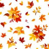 Modelo inconsútil con las hojas de otoño coloridas en blanco Ilustración del vector Imagen de archivo