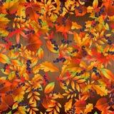 Modelo inconsútil con las hojas de otoño coloridas en el tablero de madera Ilustración del vector imagenes de archivo