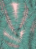 Modelo inconsútil con las hojas de palma en estilo del bosquejo Fotos de archivo