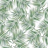 Modelo inconsútil con las hojas de palma Ilustración de la acuarela stock de ilustración