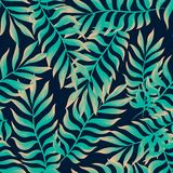 Modelo inconsútil con las hojas tropicales Fotografía de archivo libre de regalías