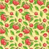 Modelo inconsútil con las manzanas, las ramificaciones y las hojas Foto de archivo libre de regalías