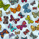 Modelo inconsútil con las mariposas Imagen de archivo libre de regalías