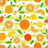 Modelo inconsútil con las naranjas decorativas Frutas tropicales Foto de archivo