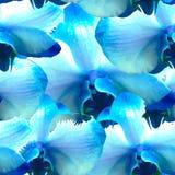 Modelo inconsútil con las orquídeas Foto de archivo