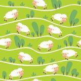 Modelo inconsútil con las ovejas divertidas en las colinas Imágenes de archivo libres de regalías