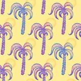 Modelo inconsútil con las palmeras dibujadas mano Imagen de archivo