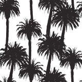 Modelo inconsútil con las palmeras en vector Imagenes de archivo
