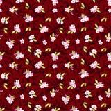 Modelo inconsútil con las pequeñas flores rosadas Imagenes de archivo