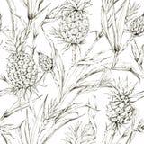 Modelo inconsútil con las piñas y las hojas Ejemplo tropical del gráfico del verano Textura botánica en sombras beige Imagen de archivo libre de regalías