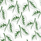Modelo inconsútil con las plantas de las hojas Imagen de archivo