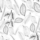 Modelo inconsútil con las plantas de las hojas Imagenes de archivo