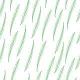 Modelo inconsútil con las plantas de las hojas Imagen de archivo libre de regalías